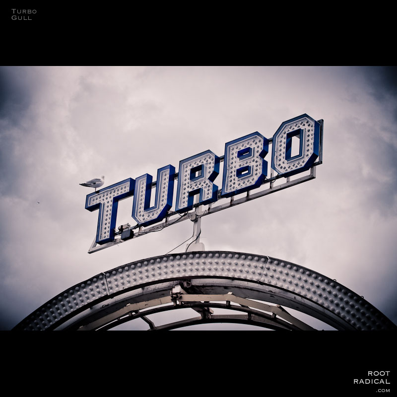 A gull sitting on a turbo sign at Brighton beach park